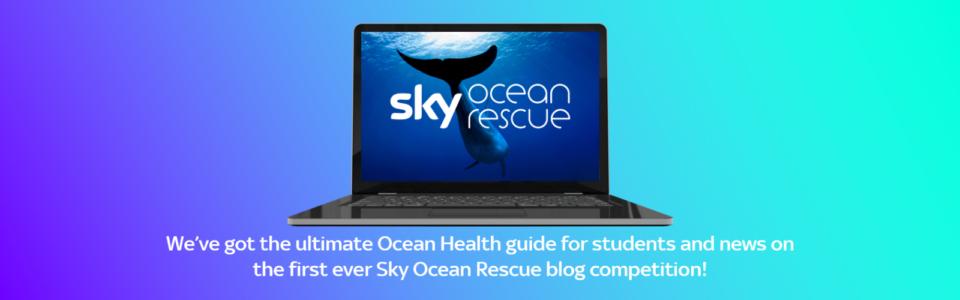 Sky Ocean Rescue Banner